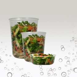 Deli containers & Lids